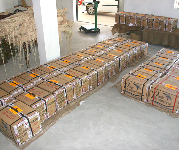 Boxes of Lavany Vanilla ready to be exported