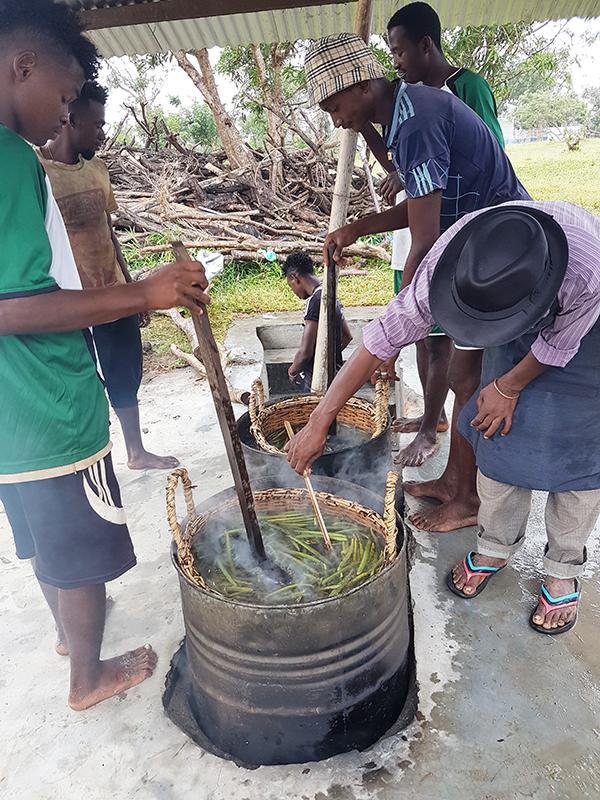 Echaudage des Vanilles LAVANY Bourbon de Madagascar