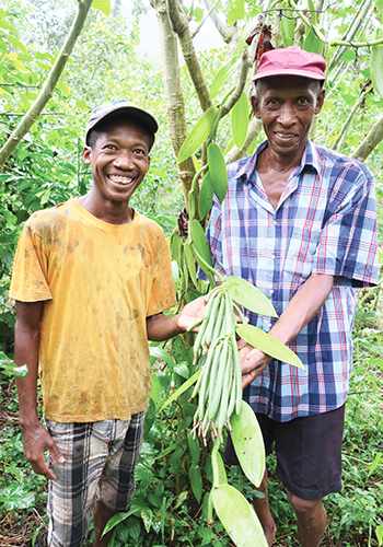 Fidjé and Anicet JERA, the two managers of the Vanilles LAVANY Bourbon plantations in Betavilona