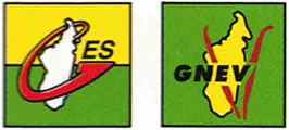 logos GES (Groupement des Entreprises de la SAVA) and GNEV (Groupement des Exportateurs de Vanille)